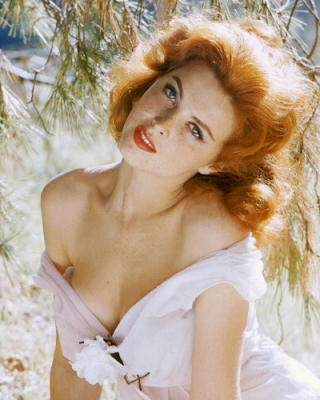 celebrity-image-tina-louise-236884