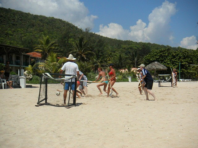 beach_hockey