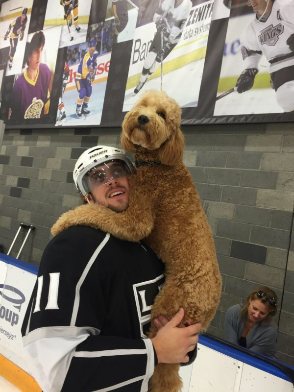 Kopitar and Gustl