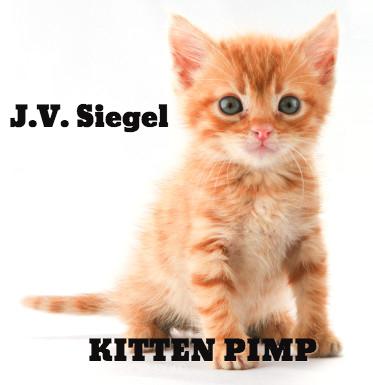 Kitten Pimp